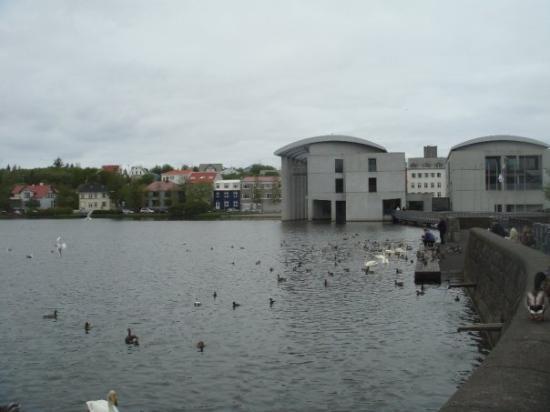 เรคยาวิก, ไอซ์แลนด์: The City Hall