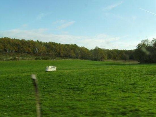 บอร์โด, ฝรั่งเศส: The French countryside .. . and a stone couch! Not something you see every day!