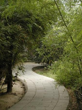 หนางฉาง ภาพถ่าย