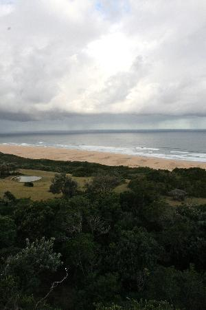 Oceana Beach and Wildlife Reserve: View from Main Lodge