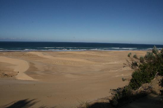 Oceana Beach and Wildlife Reserve: Gorgeous Beach
