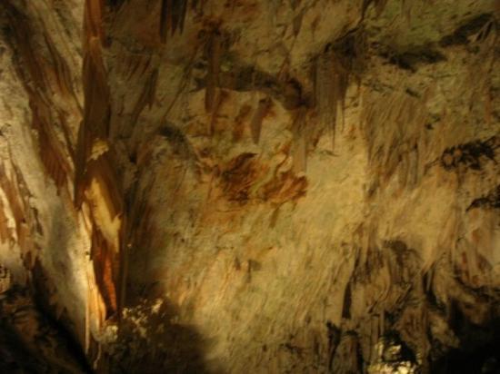 The famous Slovenian caves Postojna Jama