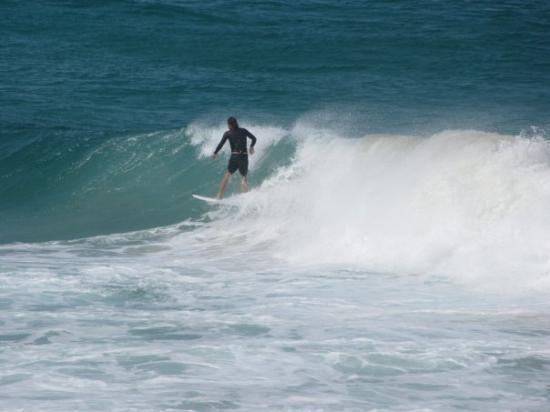 Bondi Beach ภาพถ่าย