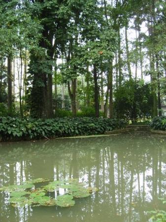 Botanical Garden (Jardim Botanico): Jardim Botânico