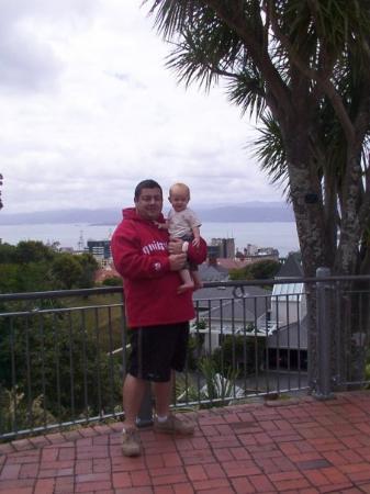 เวลลิงตัน, นิวซีแลนด์: view from Mt Wellington, New Zealand