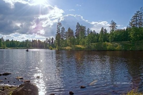 Pinetop-Lakeside Photo