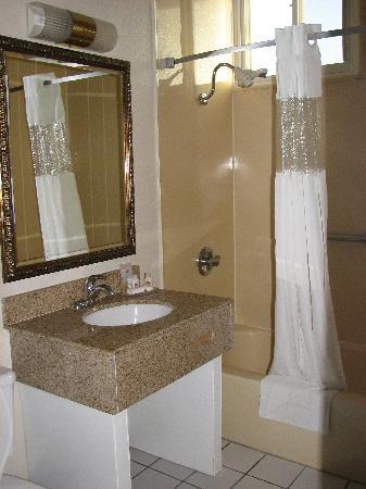 Ramada by Wyndham San Diego Airport: Bathroom