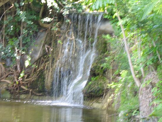 Garden of the Groves: waterfalls...