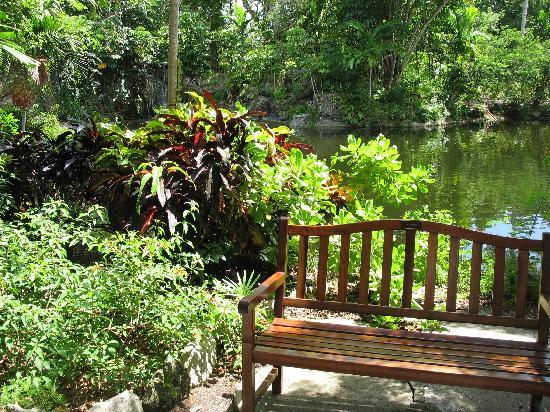 Garden of the Groves: peaceful places to relax
