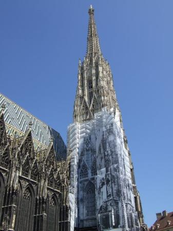 มหาวิหารเซนต์สเตเฟน: Stephans-Dom in Vienna (definitely everytime I go to Vienna they work on something)
