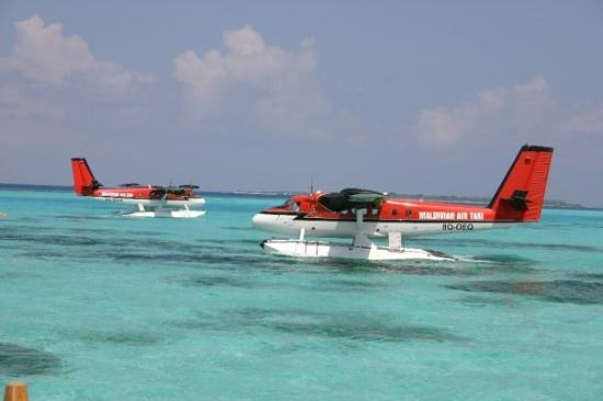 มาเล: Two DeHavilland Twin Otters