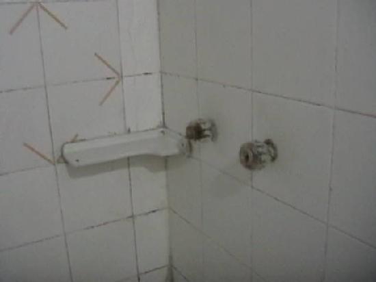 โรงแรมคอสตา เดล โซล: Hongos