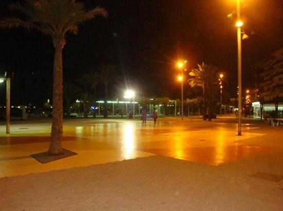 Port d'Andratx ภาพถ่าย