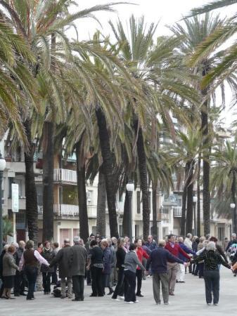 Badalona, إسبانيا: 1-2-09 Sardanes a la Rambla de Badalona