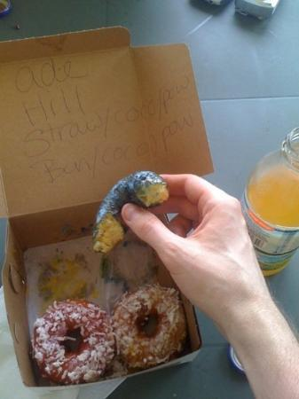 โอเชียนซิตี, แมรี่แลนด์: My breakfast beats yours