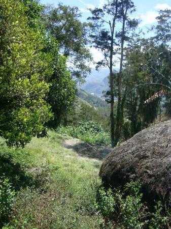 Wamena ภาพถ่าย