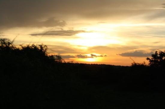 Chobe National Park ภาพถ่าย