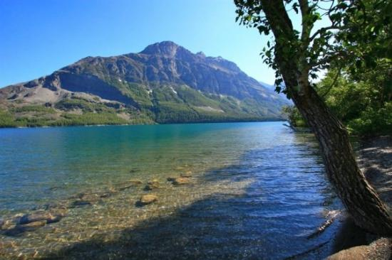 Glacier National Park, มอนแทนา: Clear and icy cold water