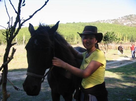 Selcuk, ตุรกี: I love horses.