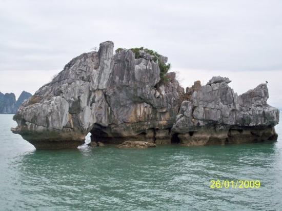 ฮาลองเบย์, เวียดนาม: 是否像一條石班魚呢?