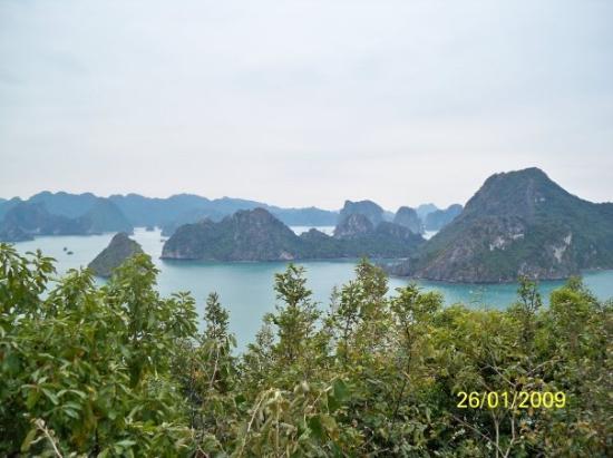 ฮาลองเบย์, เวียดนาม: 從天堂島的觀景台拍攝的下龍灣美景