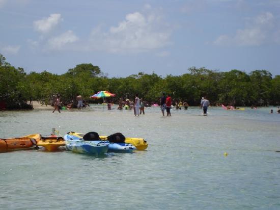 Copamarina Beach Resort & Spa: Guilligan's Island