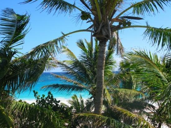 เกาะฮาร์เบอร์ ภาพถ่าย