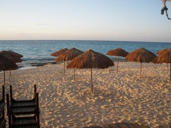 พลายาเดลคาร์เมน, เม็กซิโก: the next morning...