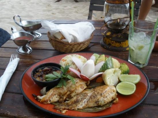 พลายาเดลคาร์เมน, เม็กซิโก: yumm!