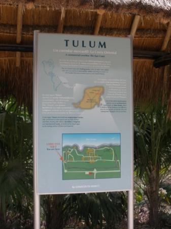 พลายาเดลคาร์เมน, เม็กซิโก: Yayy...I arrived in Tulum!