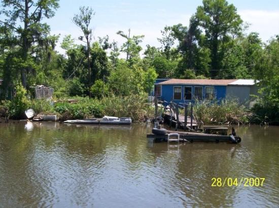 นิวออร์ลีนส์, หลุยเซียน่า: Bayou, New Orleans, LA, United States