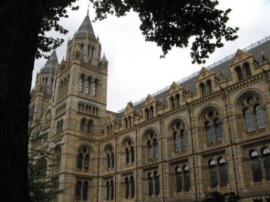 พิพิธภัณฑ์ประวัติศาสตร์ธรรมชาติ: Nature's history museum.