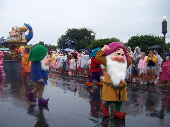 Walt Disney World Resort: The dwarfs!!!!!!!!