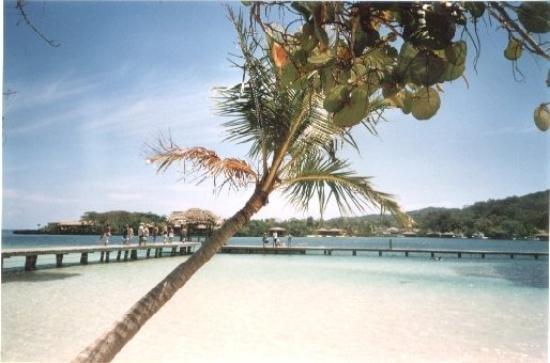 Roatan (เกาะโรอาทาน) ภาพถ่าย
