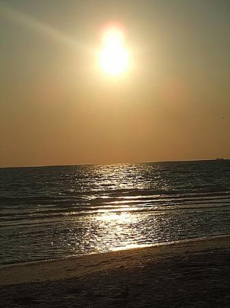 ซาราโซตา, ฟลอริด้า: Sunset in Mex Gulf
