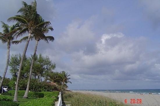 ปาล์มบีช, ฟลอริด้า: Palm Beach