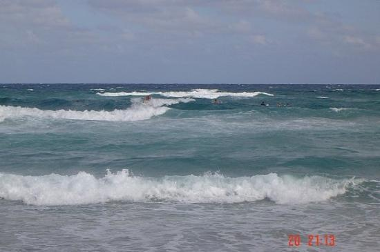 ปาล์มบีช, ฟลอริด้า: Surfing in USA
