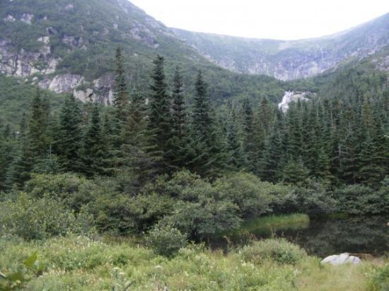 Mount Washington ภาพถ่าย