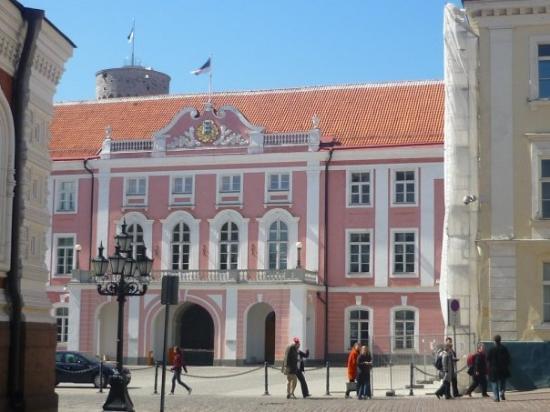 ทาลลินน์, เอสโตเนีย: Pink