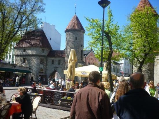 ทาลลินน์, เอสโตเนีย: The gate of old Tallinn