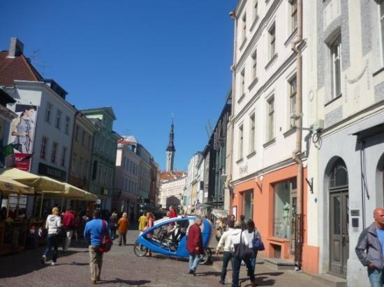 ทาลลินน์, เอสโตเนีย: Enthralling