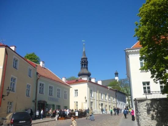 ทาลลินน์, เอสโตเนีย: So bright :D