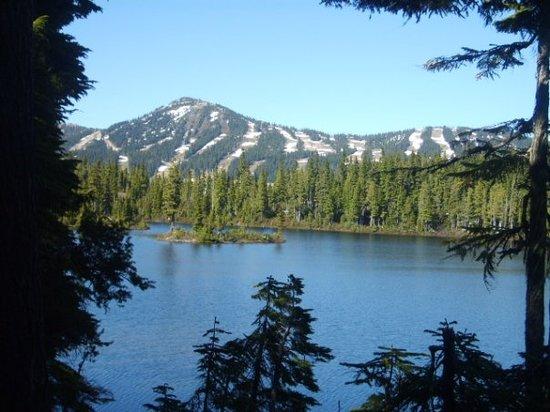 Mount Washington Alpine Resort All You Need To Know