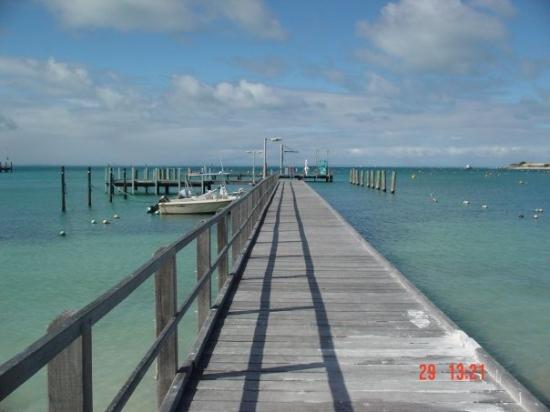 เพิร์ท, ออสเตรเลีย: rottnest island
