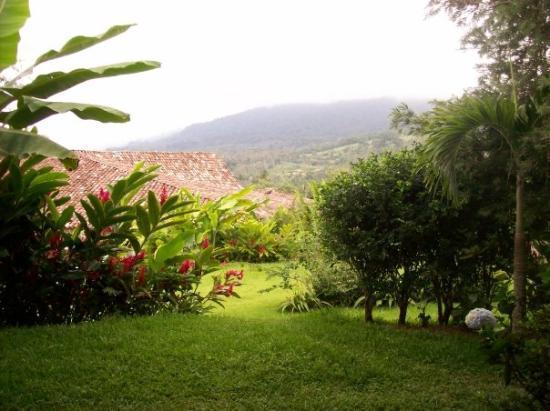 บากาเซส, คอสตาริกา: Our view from the villa