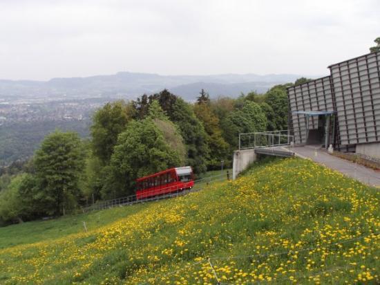 Gurten - Park im Grünen Aufnahme