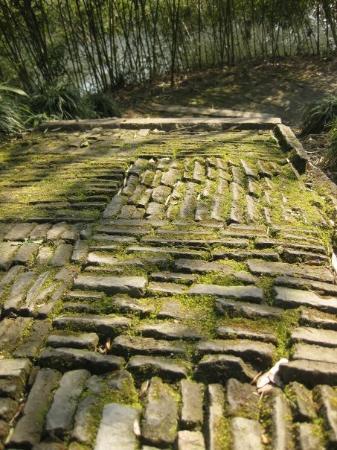 ซูโจว, จีน: humble administrator's garden