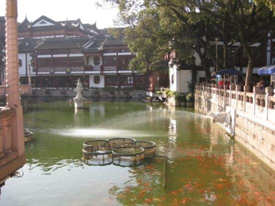 Yuyuan Bazaar ภาพถ่าย