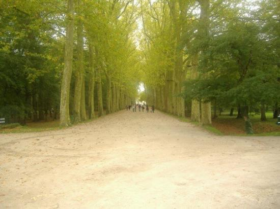 วังเชอนงโซ: Chenanceu - The trail to the chateaux.