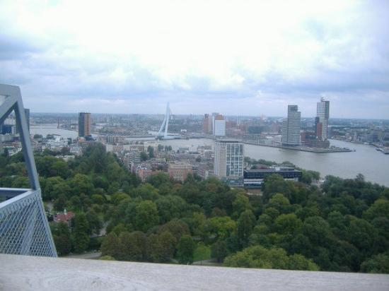 Euromast Tower: Great views!  Erasmus.